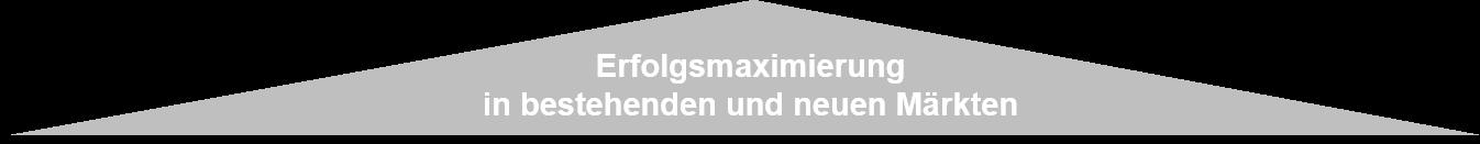 Franken-Consulting Leistung Unternehmensberatung Strategie Marketing Vertrieb